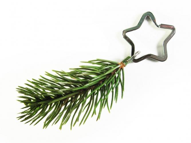 Tannenzweig Schlüsselanhänger für Weihnachten mit Stern Schlüsselring