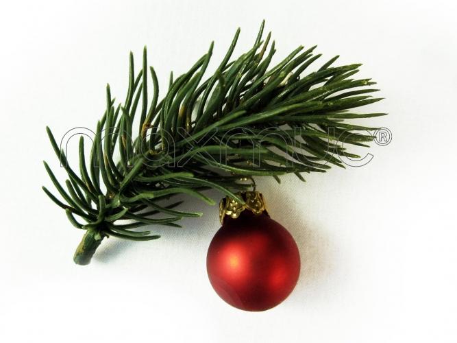 Kleine Weihnachts Haarspange mit Tannenzweig und Weihnachtskugel